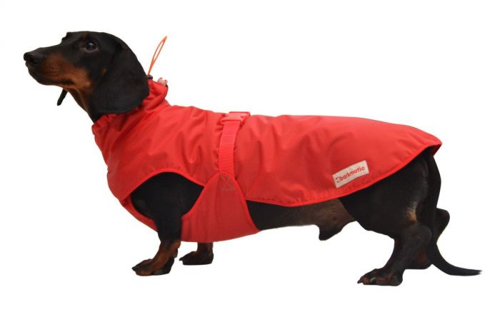 Wrap up your dachshund and keep her snug in the Cocoon. This cosy wraparound winter coat is designed for dachshunds of all shapes and sizes.  